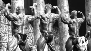 "Evan ""Ox"" Centopani: Journey to the 2012 Arnold, Pt. 10"