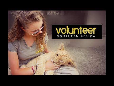 Volunteer southern Africa -Living With Big Cats - Meet Rob&Morgan