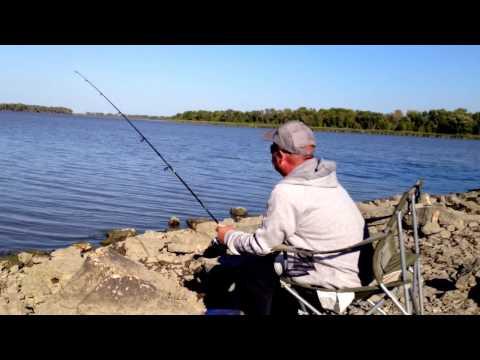 Fishing - Netley Creek 2016