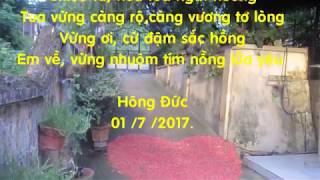 Video  VUNG OI Khong loi