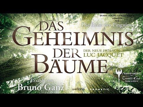 DAS GEHEIMNIS DER BÄUME - Trailer Deutsch - WINNER Cosmic Angel Award 2014 Jury- Publikumspreis