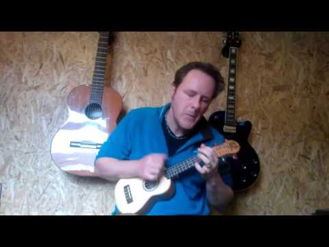 Here comes the Sun (The Beatles) performed by Paul Mansell on Ukulele