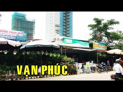 Đột nhập chợ cây cảnh lớn nhất Hà Đông | Hanoi travel