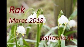 Rak: Marec 2018