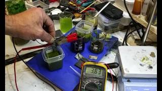 Chlorophyll & A Thermal Chlorophyll SOLID State Battery Do Not Miss This Video