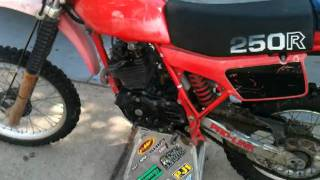 1981 Honda XR250R for sale