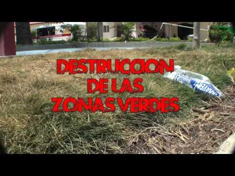 Destrucción del Parque Diogenes A  Arrieta