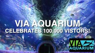 VIA AQUARIUM'S 100,000th VISTOR!