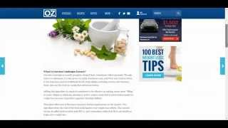Garcinia Cambogia For Weight Loss Best Value