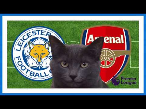 Leicester City vs Arsenal Cass the Cat Predicts
