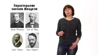 Эволюция - 3. Синтетическая теория эволюции - часть 1.