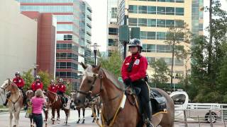 Alpha & Omega Mounted Security Patrol : Safety You Can See
