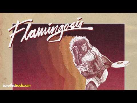 ✦ Flamingosis - Feels (futurefunk)