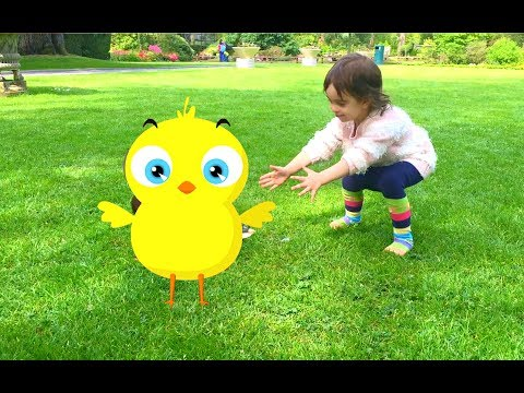 El Pollito Pio -Little Girl Playing with the Duck - Little Chick