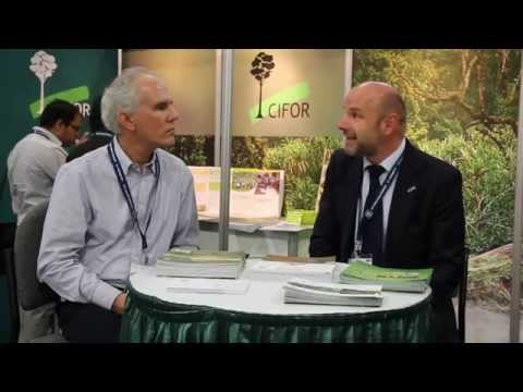 CIFOR and IUFRO in Latin America
