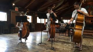 Seven Sonorities for Double Bass Trio (Walton)