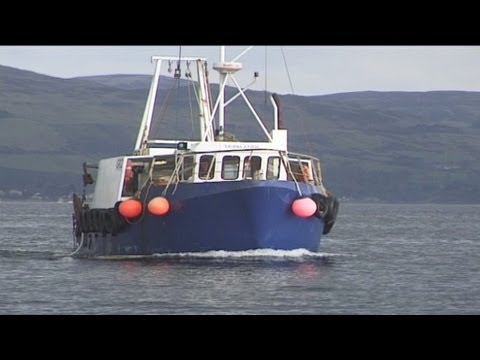 Trawling and Tubing Live Nephrops Prawns