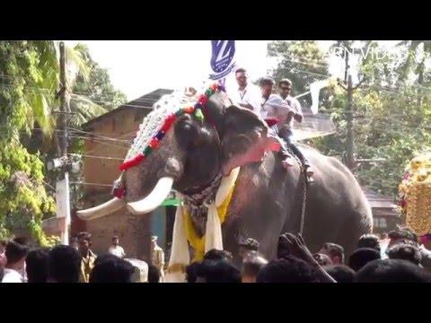 Puthupally Kesavan ( പുതുപ്പള്ളി കേശവൻ ) Edakkazhiyoor Nercha 2016