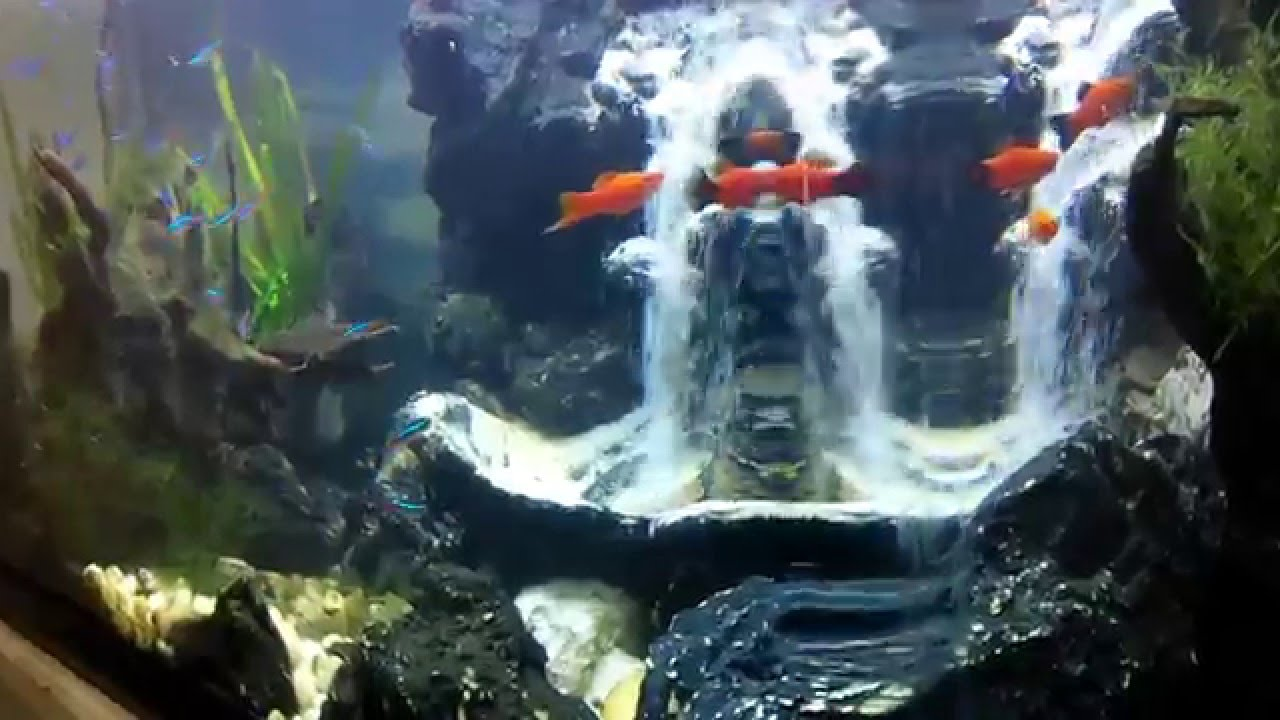 Aquascape Air Terjun JEP - YouTube