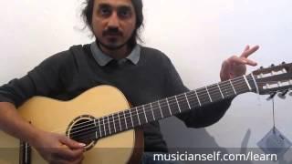 How to Guitar |Thendral Vandhu Theendum Pothu | Raga Carnatic slides, hammer ons, pull offs