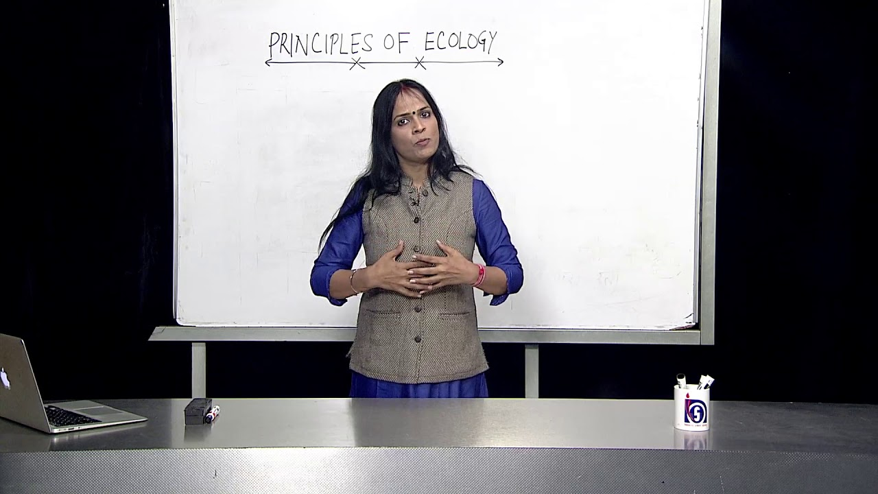 Lesson 25 Principles of Ecology Part 1 - YouTube