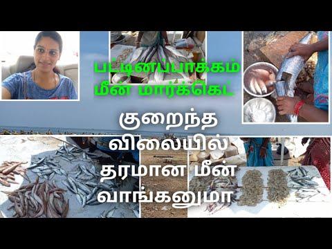 Pattinapakkam Fish Market After Lockdown/Marina/Vanjaram Slicing/Pomfret Cleaning/Chennai Fishmarket