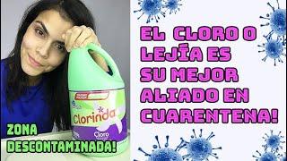 Cómo limpiar la compra del mercado, frutas, huevo y domicilio en ésta #cuarentena. #Cloro #Lejía