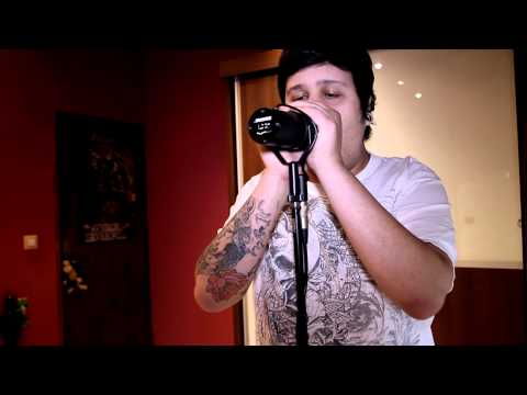 Not the american average (Asking Alexandria) Vocal cover by Diego Teksuo (cleans&screams)