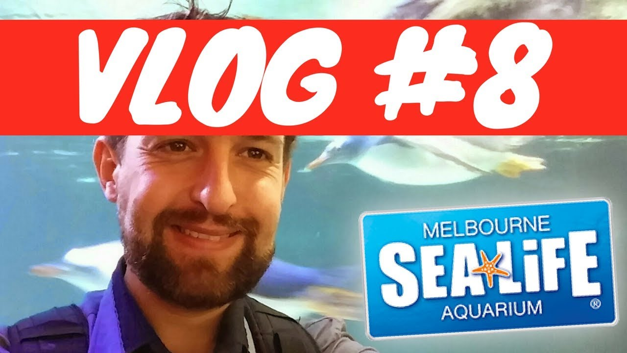 Sea Life - Melbourne Aquarium - Treasure Escape - YouTube