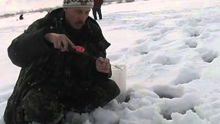 Соревнование по зимней блесне в Лысково Нижегородской области в