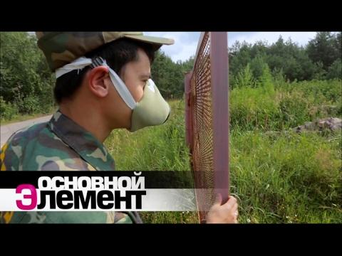 Зверская зона Чернобыля