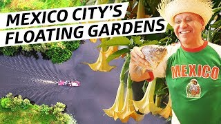 How Mexico City's Mysterious Floating Gardens Helped Feed the City For Hundreds of Years