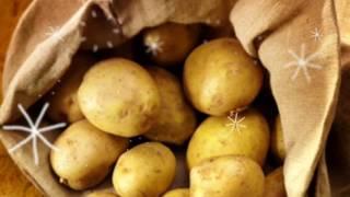 КАРТОФЕЛЬ ОПАСЕН! Почему картофель вреден для здоровья! зеленый картофель вреден!