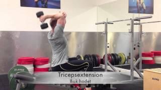 Tricepsextension - з ручним, 1 руку, за ходет