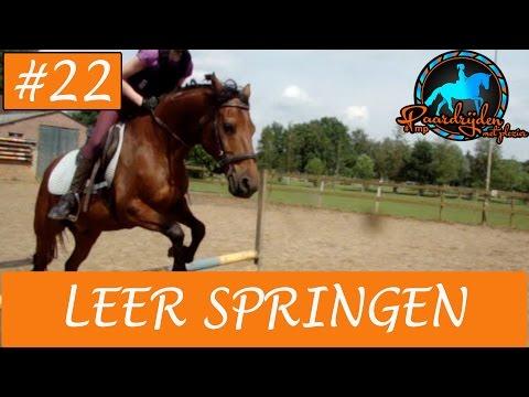 Paardrijden - Hoe leer je springen met je paard