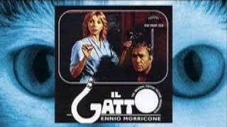 Play Il Gatto