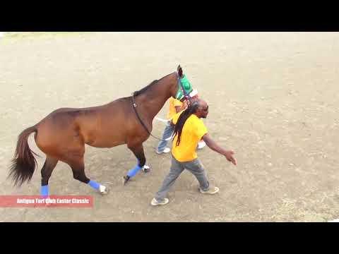 Antigua Turf Club Easter Classic 2018