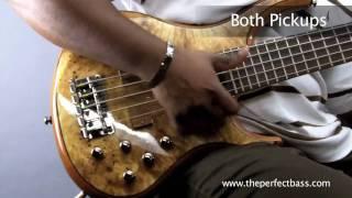MTD Kingston Z5 Bass w/ Rosewood Fingerboard Demo - The Perfect Bass