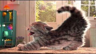 El gatito - Día de fiesta de disfraces #2