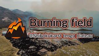 四国カルスト天狗高原の山焼きの様子をドローンで撮影!Take a drone shot of the mountain grilling in Shikoku Karst Tengu Kogen!
