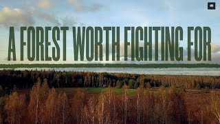 A Forest Worth Fighting For