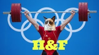 H&F - СЕКС: ГРЫЖА и КОТ (18+)