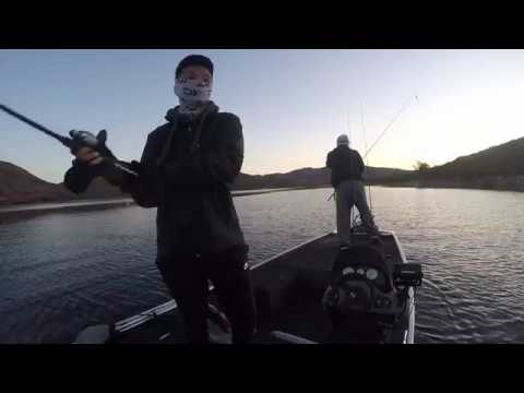Dropshot bass and trolling for striper at lake skinner for Lake skinner fishing report