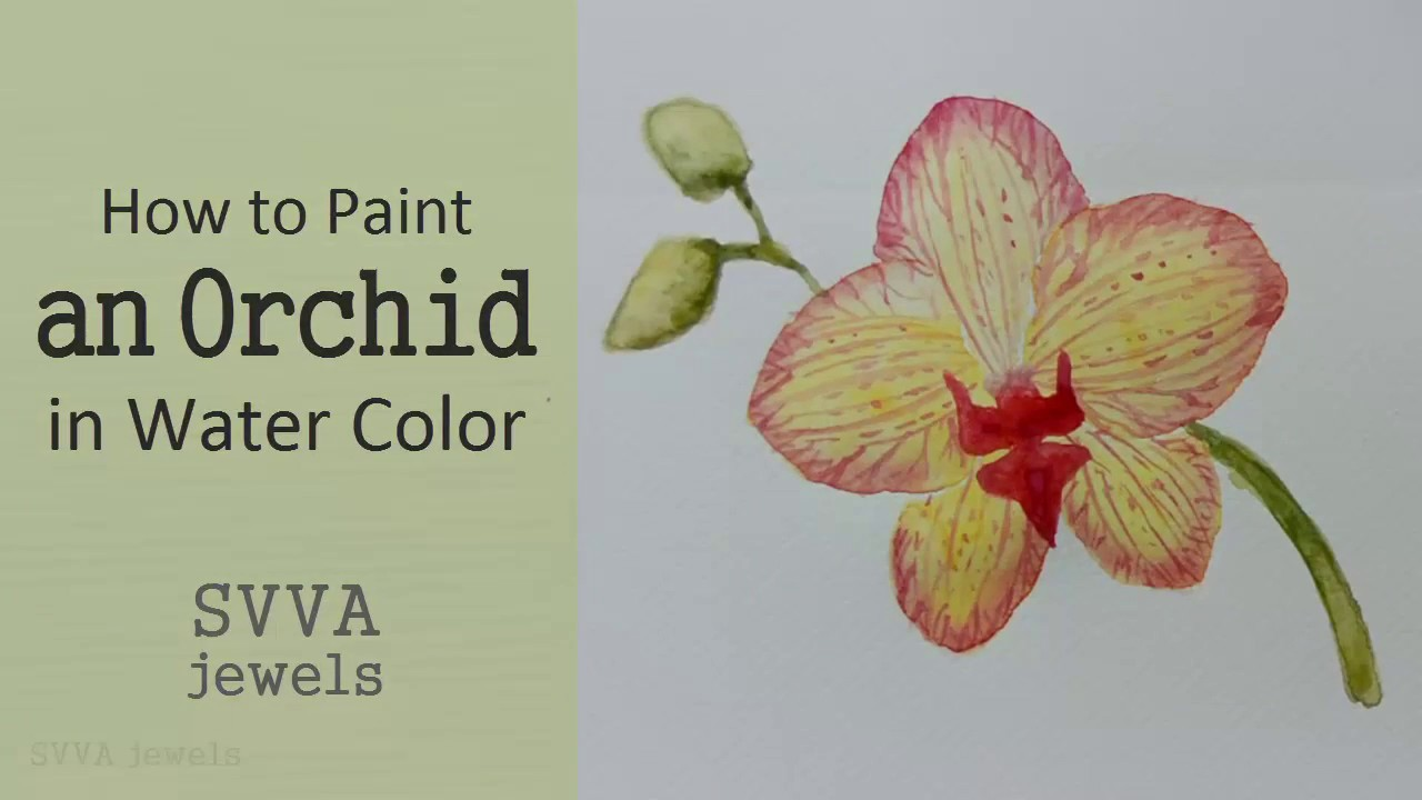 how to paint a red and yellow phalaenopsis orchid no pre drawing