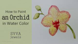 How to Paint a red and Yellow Phalaenopsis Orchid; No-pre Drawing