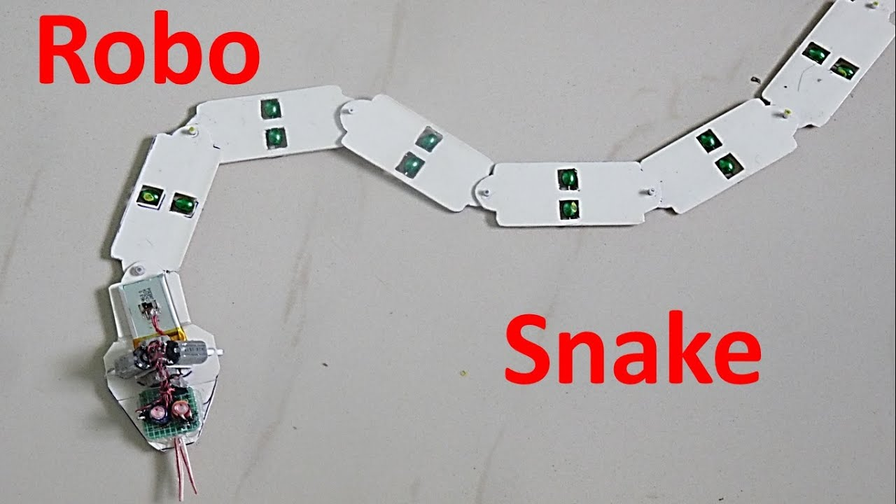 How To Make A Snake Robot At Home Diy Youtube Skeleton Diagram The Skull Very