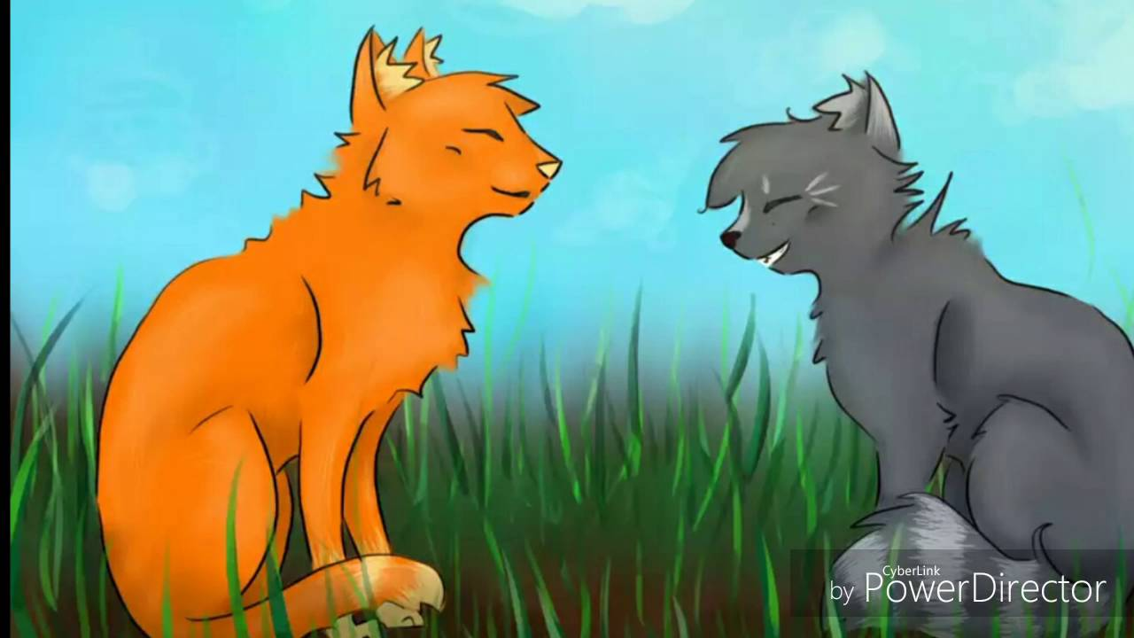 Firestar Cinderpelt Warrior Cats Youtube