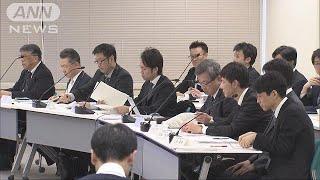 重大事故対策など議論 六ケ所村の再処理工場を審査(19/01/28)