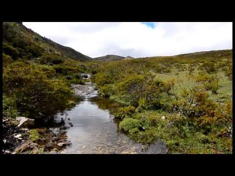 El Agua de los Páramos y Bosques Nublados de Piura