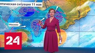 """""""Погода 24"""": к Москве снова подбираются снегопады"""